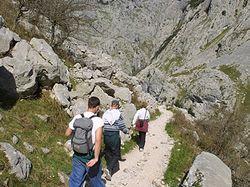 Guided tours of Picos de Europa