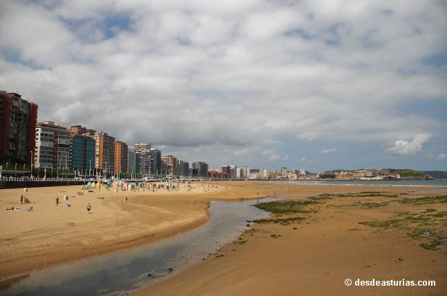 Beaches with dogs in Gijón