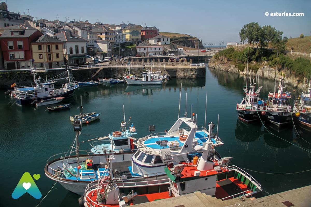 Port of Vega, a wonderful place