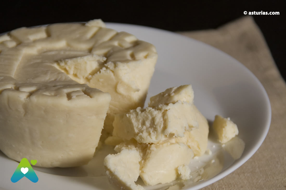 Casin Cheese