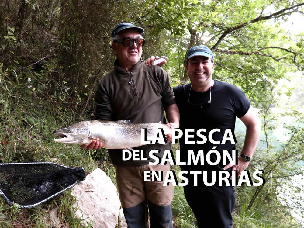 The salmon of Asturias