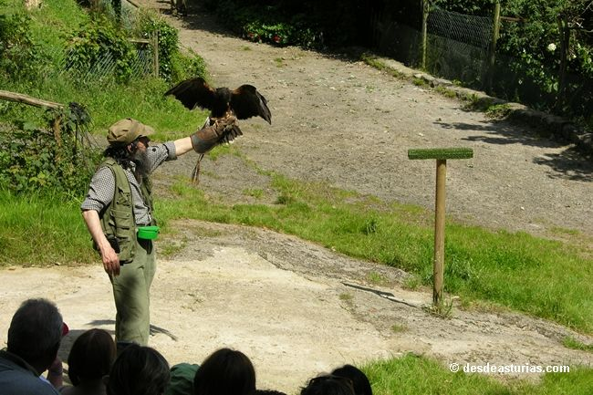 Zoo der Grandera