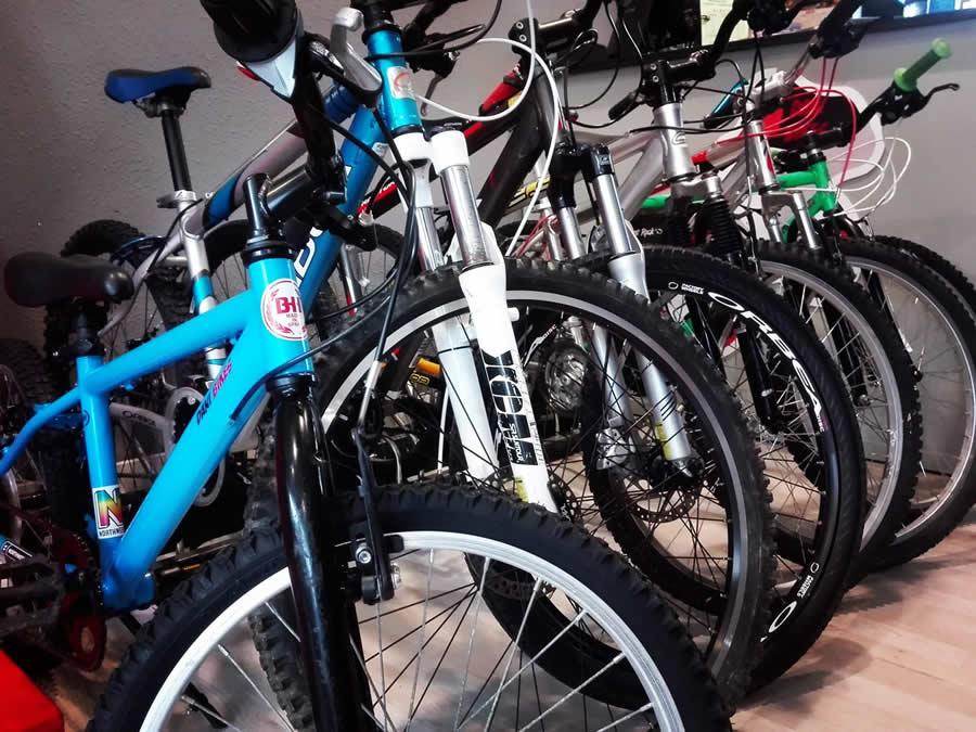Dani Bikes