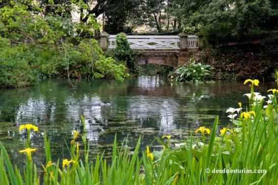 Jardin Botanico De Gijon Que Ver En Gijon Asturias Que Ver En